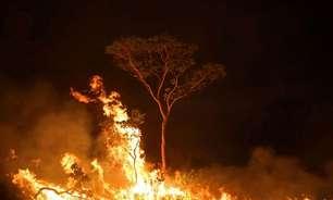 Multas pagas por crimes ambientais na Amazônia caem 93%