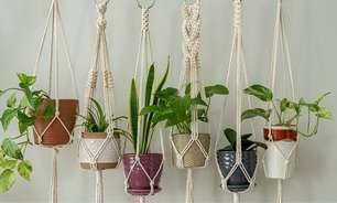 Macramê para plantas: saiba como usar o artesanato na decoração