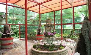 Jardim botânico e ruínas se misturam em parque de Porto Rico