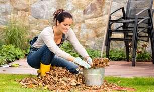 Paisagistas explicam como preparar o jardim para o inverno