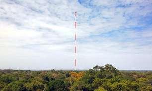 Como a poluição em Manaus tem afetado chuvas e fotossíntese na Amazônia