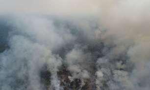 PF deflagra operação contra incêndio, desmatamento ilegal e usurpação de terras da União no Amazonas