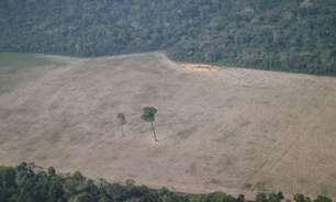 Governo autoriza uso da Força Nacional na Amazônia