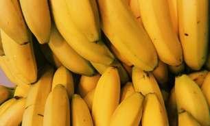 Receitas com banana diferentes para surpreender na cozinha