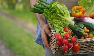 Agricultura familiar é impactada com cortes de crédito