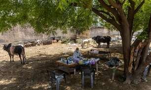 Vilarejo da Índia cuida de pacientes com Covid-19 debaixo de árvore