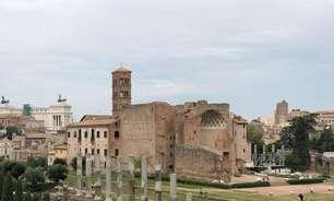Vinho feito na área do Coliseu poderá ser consumido em 2025