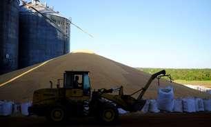 Rabobank reduz projeção para safra de milho 20/21 do Brasil a 89,5 mi t; eleva soja