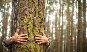 Pequenos gestos no dia a dia ajudam muito o meio ambiente