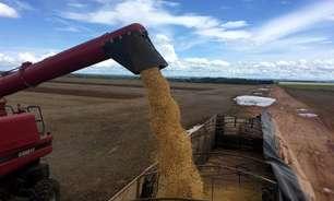 Exportação de soja do Brasil em junho reduz ritmo e fica abaixo de 2020, diz Secex