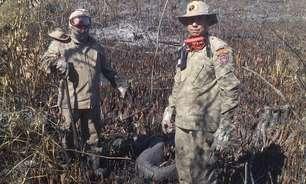 As desoladoras imagens do resgate de animais em incêndio em Bonito (MS)