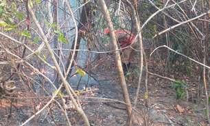Fogo na Chapada dos Veadeiros destrói 10 mil hectares