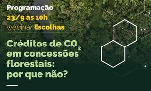 Webinário: Créditos de carbono em concessões florestais