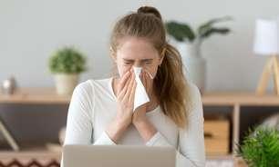 Chás podem curar a sinusite? 5 mitos e verdades sobre doenças respiratórias