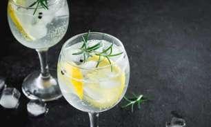 Gin: aprenda a fazer drinks deliciosos e fáceis