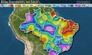 Produtores de grãos estão animados com a chuva no MATOPIBA