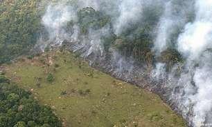 EUA anunciam pacto contra desmatamento da Amazônia