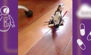 Garoto cria robô que ajuda quem precisa tomar remédios