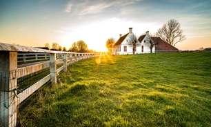 Expansão das fronteiras agrícolas aquece imobiliárias rurais