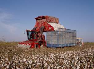 Com incentivos, produtor rural opta por maquinário nacional
