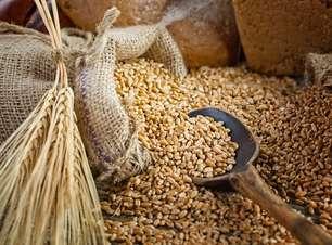 Demanda por trigo brasileiro deve ser abaixo do esperado