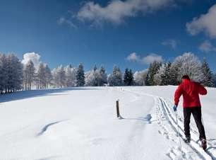 Veja quais são as estações e quanto custa esquiar na Europa