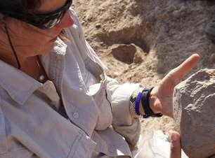 Cientistas descobrem ferramenta de 3,3 milhões de anos
