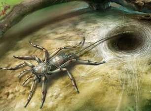 Fóssil de animal com corpo de aranha e cauda de escorpião é encontrado na Ásia