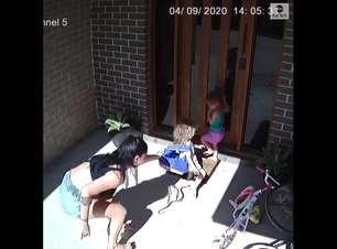 Mãe salva filhas de cobra venenosa na porta de casa; vídeo