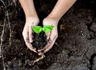 10 maneiras de colaborar com o Dia do Planeta Terra