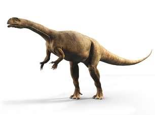 Dinossauro africano tinha crescimento bem diferente