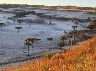 Frio provoca geada e novos recordes no Sul do BR