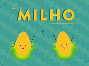 Como introduzir milho no cardápio da criança? Veja 10 receitas saborosas!