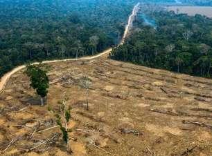 PF faz busca e apreensão contra maior grileiro da Amazônia
