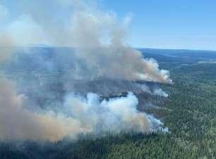 Província do Canadá decreta emergência por incêndios