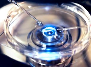 Inteligência artificial ajuda médicos a escolherem os melhores embriões em processos de fertilizações in vitro