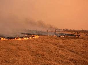 Área queimada do Pantanal até agosto já supera perda de 2020