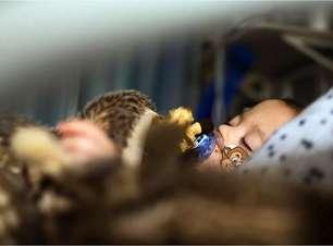 VSR: o pouco conhecido vírus que se espalha entre crianças no mundo e também no Brasil