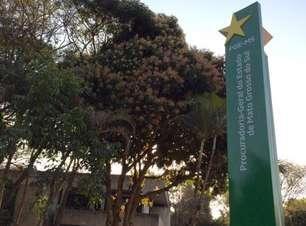 Concurso PGE MS 2021: dispensa confirma o Cebraspe como banca