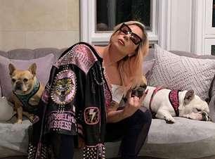 """Passeador de cães da Lady Gaga que foi baleado diz: """"ela foi um anjo"""""""