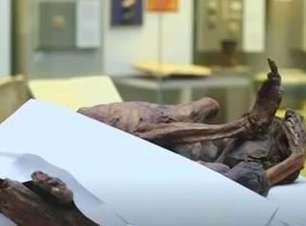 Descobertas tatuagens mais antigas do mundo em múmias