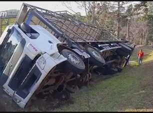 Caminhão carregado com frango tomba às margens da PR 180
