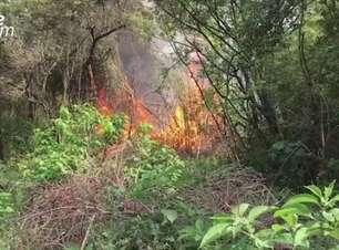 Grande incêndio em vegetação preocupa moradores do Bairro Guarujá