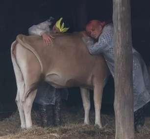 """A Fazenda 13: Aline é """"consolada"""" por vaca e se emociona"""