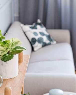 Mude o astral da sua casa com essas 5 plantas energizantes
