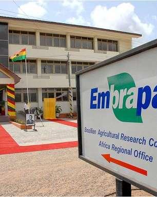 Contra a fome, Embrapa desenvolve projetos na África