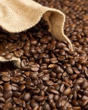 Reajuste do mínimo do café é insuficiente, diz consultor
