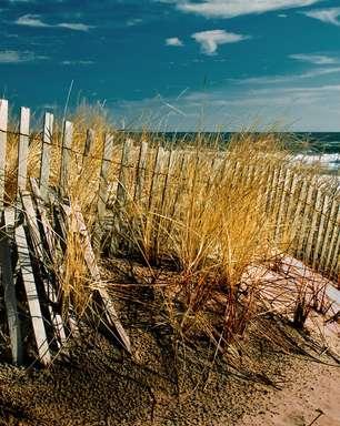 Relatório aponta as praias mais limpas e sujas dos EUA