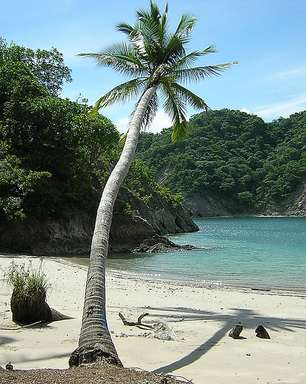 Conheça ilha perto de San José que inspirou 'Jurassic Park'