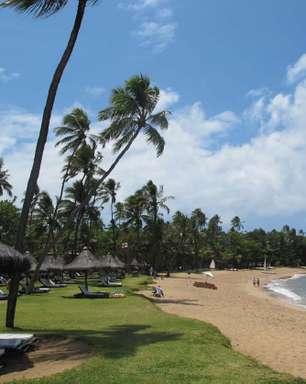 Praia do Forte reúne tranquilidade e belezas naturais na Bahia; conheça